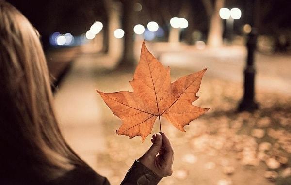 И придет из зимы в их живые глаза — осень…
