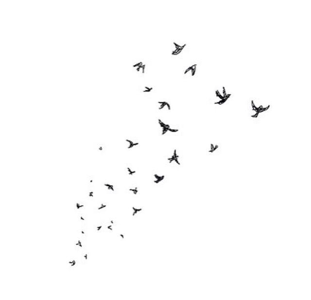 110768-Fly-Away-Birds