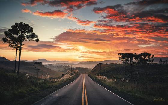 road_to